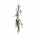Moss branch